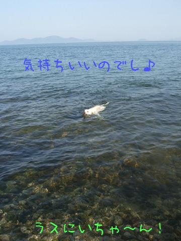 DSCF4075_20110414195210.jpg
