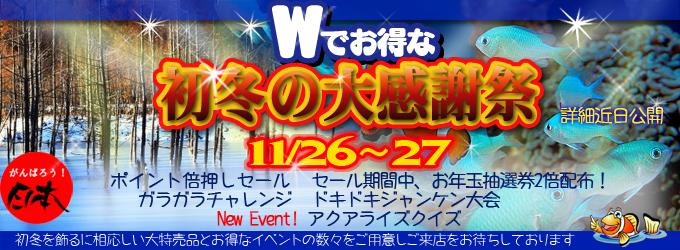 banner_2011shotou.jpg