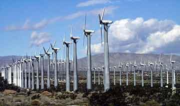 Windmillsfarm.jpg