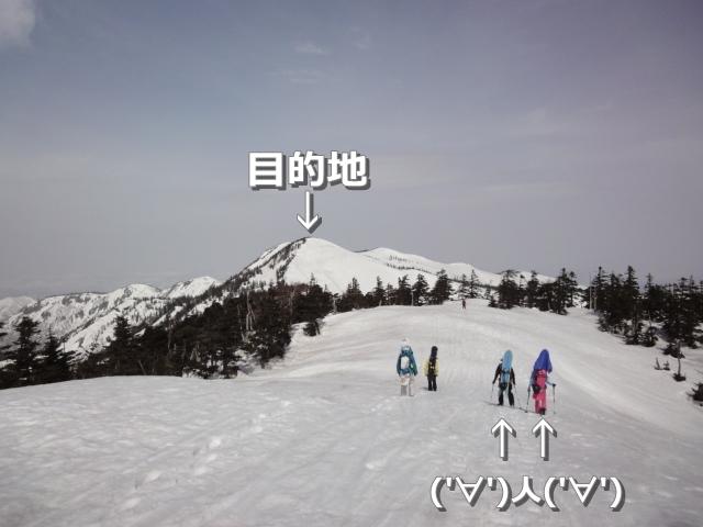 DSC06210a.jpg