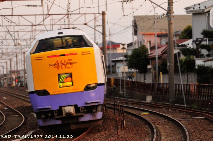 aDSC_9871.jpg