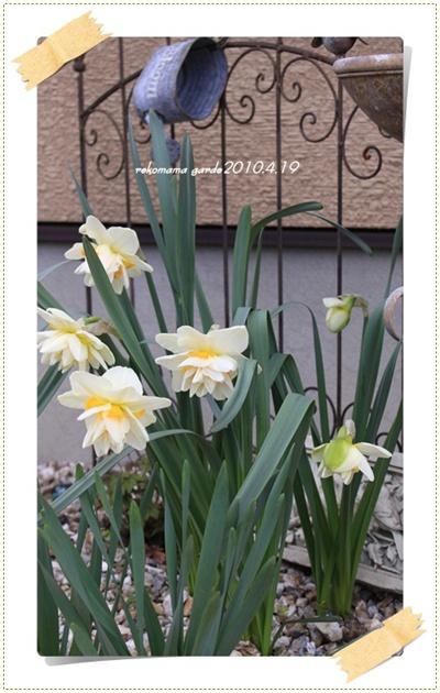 2010_04_19_05773.jpg