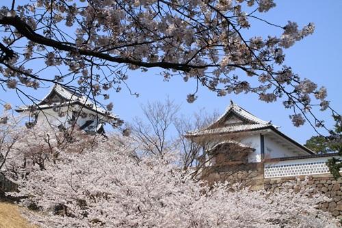 IMG_3249kanazawa3.jpg