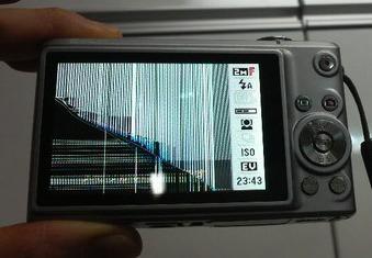 20111219.jpg