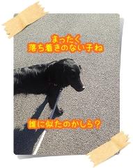 IMG_1613.jpg