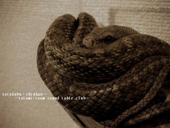 2012_0104_035000.jpg