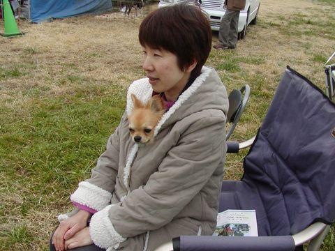 2010-02-14-ドッグショ- A (9)