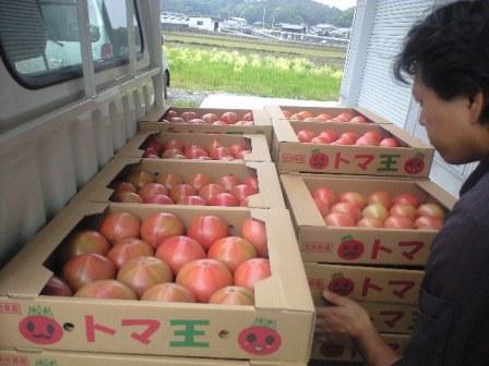 2010-5-5-トマ王 (6)
