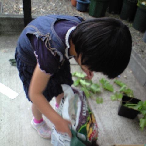 2010-05-15-ぶどう1