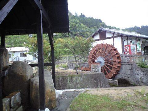 2010-05-29-河宇田2