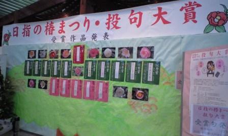2010-08-12-椿