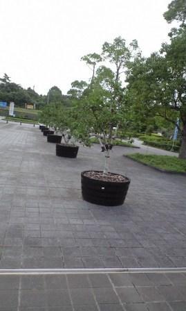 2010-08-農業公園3