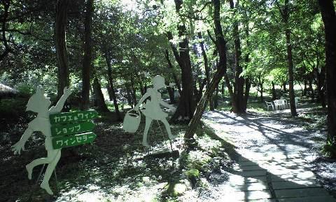 2010-08-巨峰ナーセリー 7