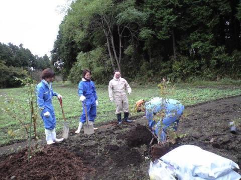 2010-10-30-穴掘り1