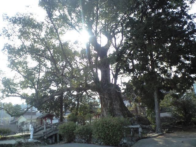 2011-2-5-椿八幡神社1
