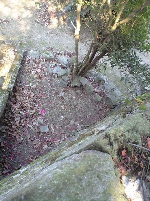 2011-2-5-椿八幡神社19