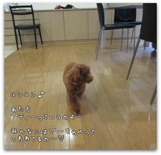 3Ae2XEWoHhEio_f.jpg