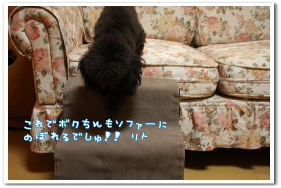 IvWd9.jpg