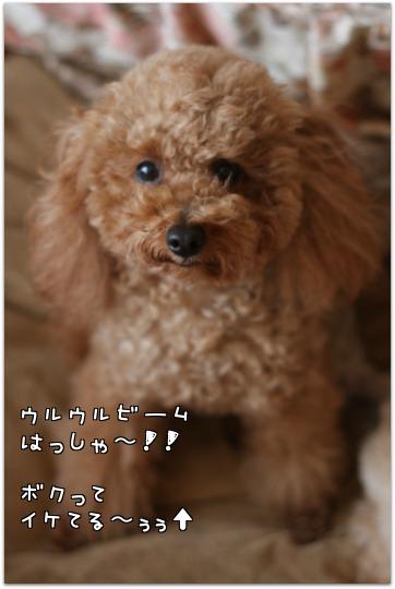 J_t_1.jpg