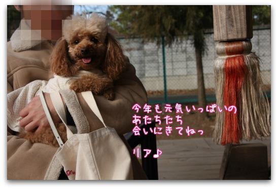 Xq4By.jpg