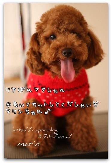 pQa_W.jpg