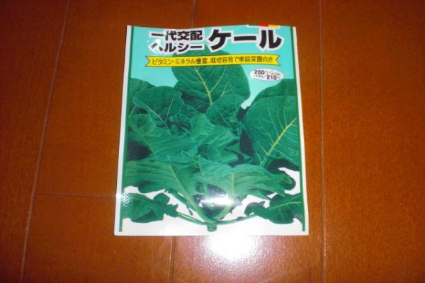 001_convert_20110323223925.jpg