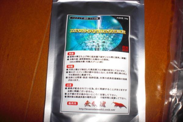 004_convert_20110207233933.jpg