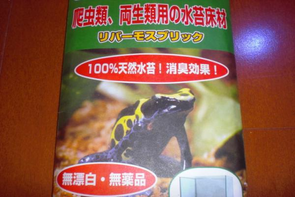 008_convert_20110302234742.jpg
