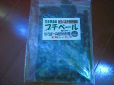 CIMG4156_convert_20110125085544.jpg