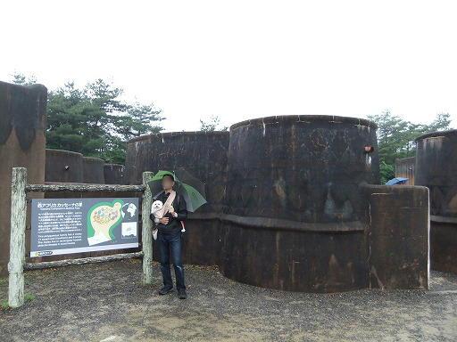 20110618 059