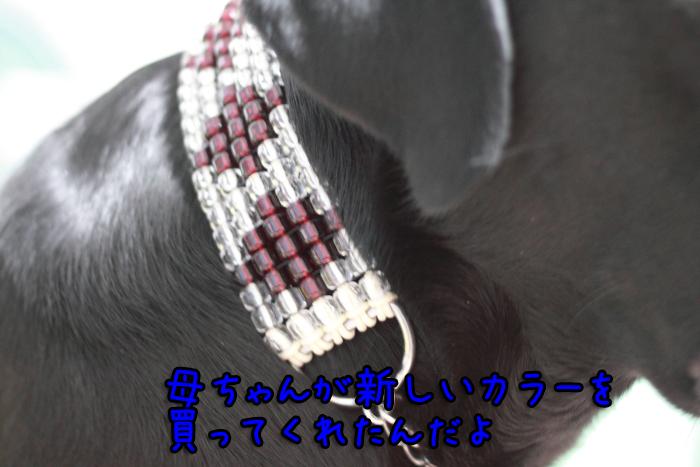 20111214-005.jpg