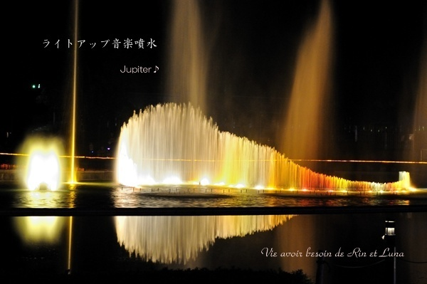 10-DSC_3225.jpg