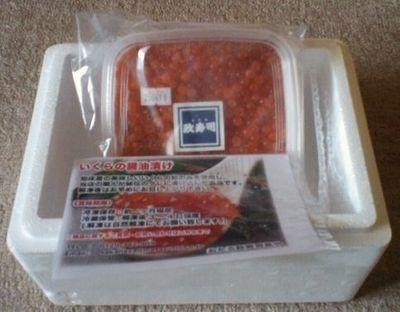 おたる政寿司特製いくら醤油漬け