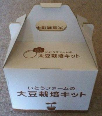 大豆栽培キット