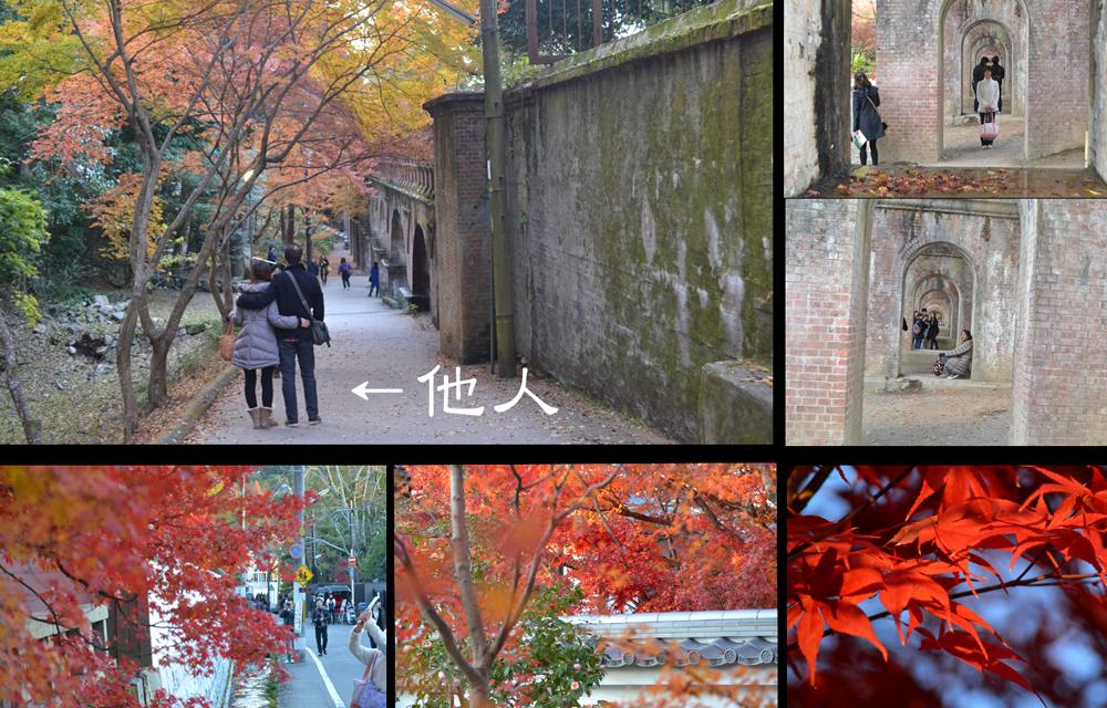 201312N_11151-2.jpg