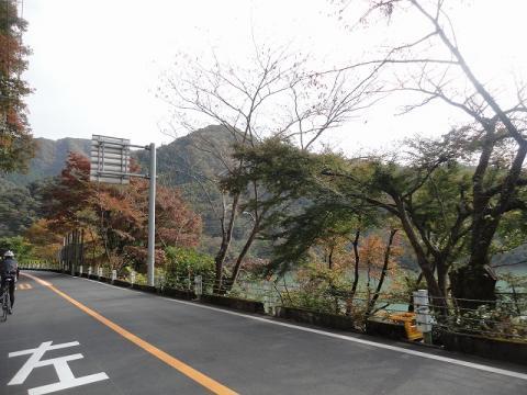 20111103_10.jpg