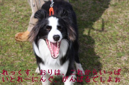 IMG_006912.jpg