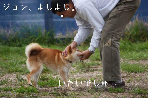 IMG_0100jyon.jpg