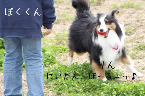 IMG_0118rin.jpg