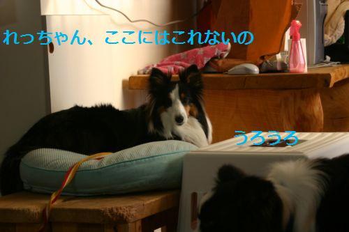 IMG_2976.jpg