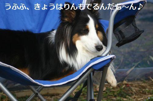 IMG_3570.jpg