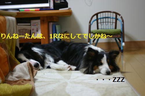 IMG_3658.jpg
