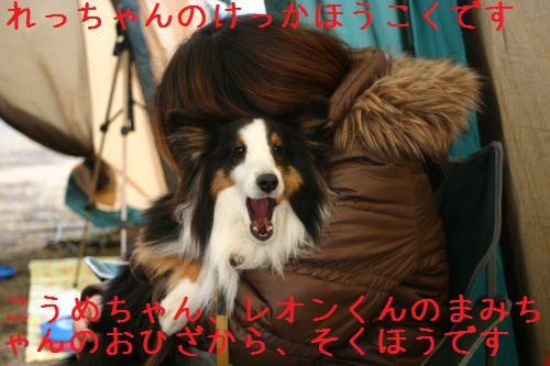 IMG_3852.jpg