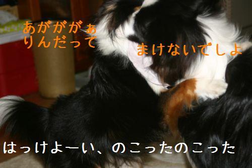 IMG_3958.jpg
