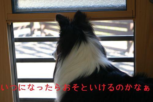 IMG_4615.jpg