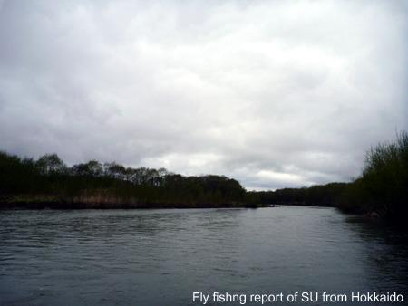 20110515b.jpg