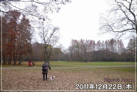 散歩デート②