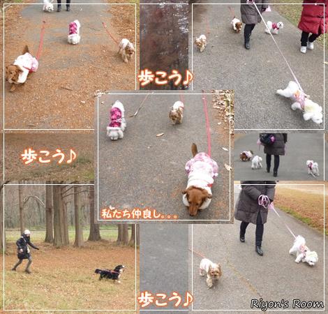 散歩デート⑨