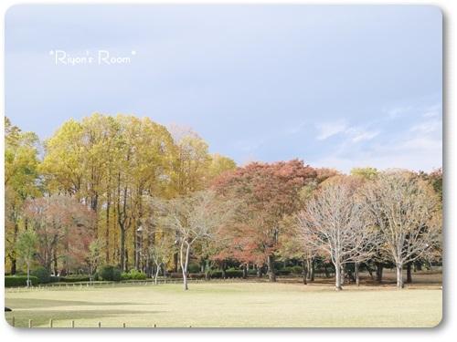 小金井公園①