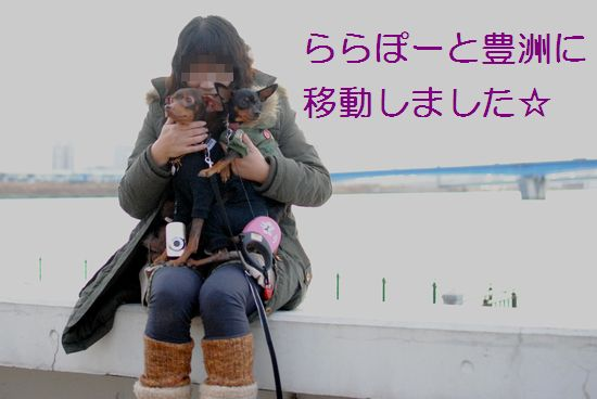 DSC_0062_20120114170734.jpg